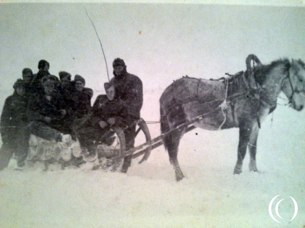 Posing on a sled with mule during winter time in Russia