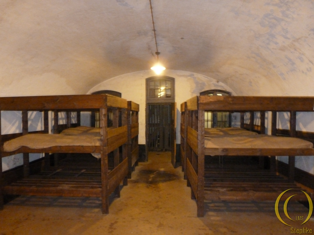 Inside a cell