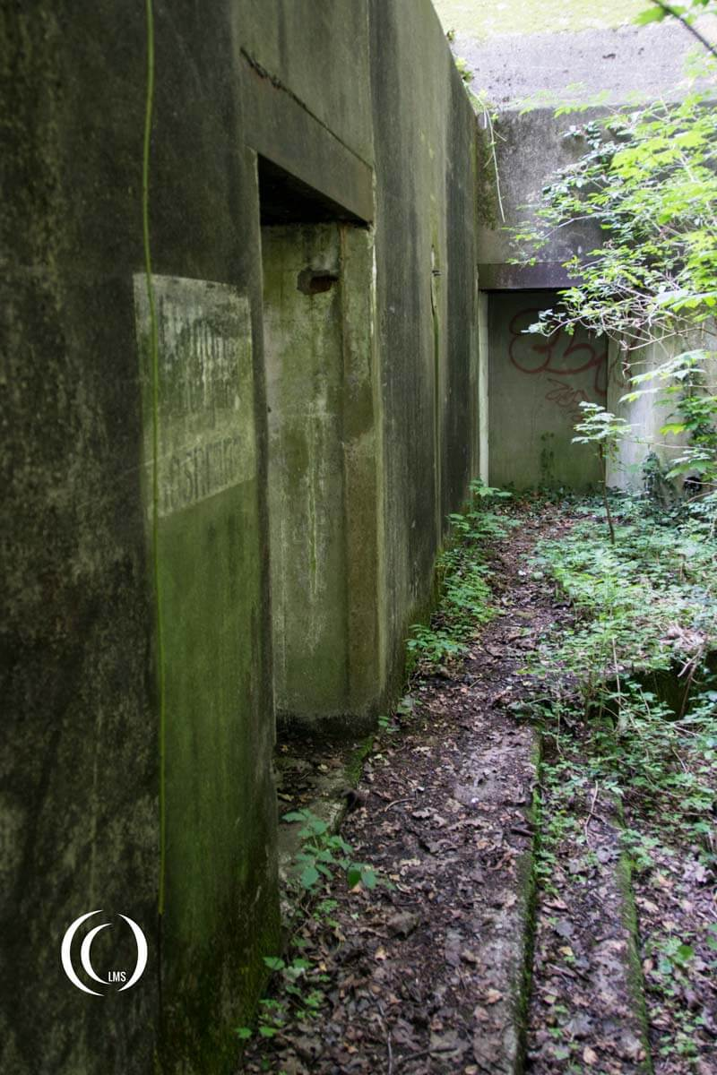Bunker at Staelduinse Forest Hook of Holland