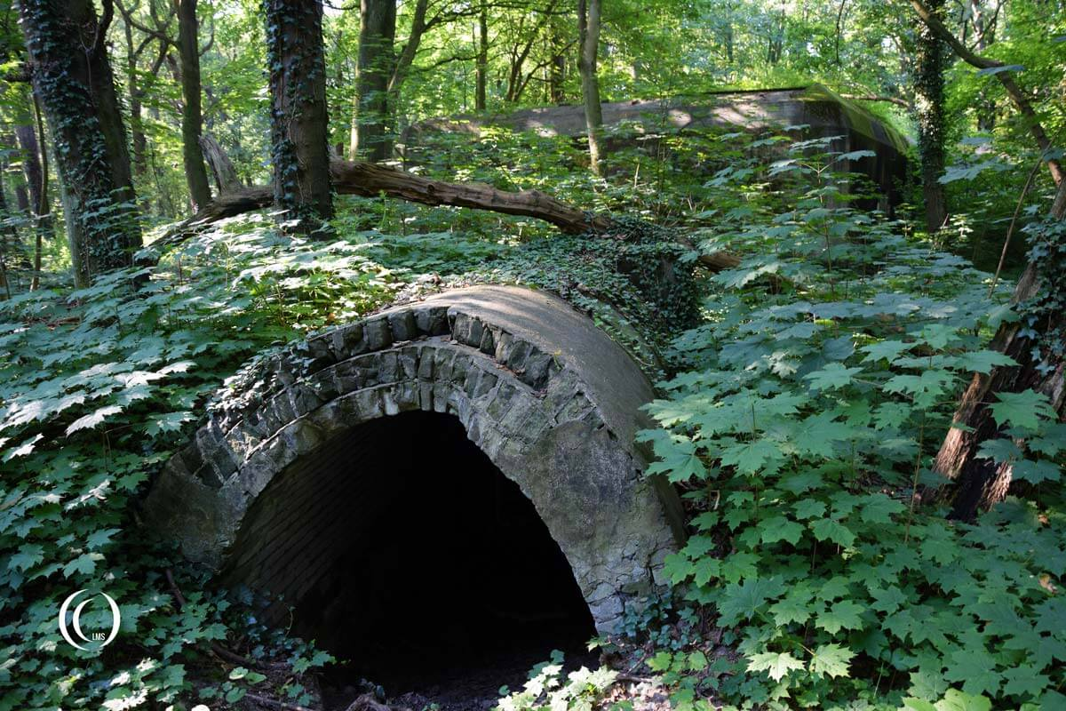 Tunnel leading towards the Dressing Station Type 118c