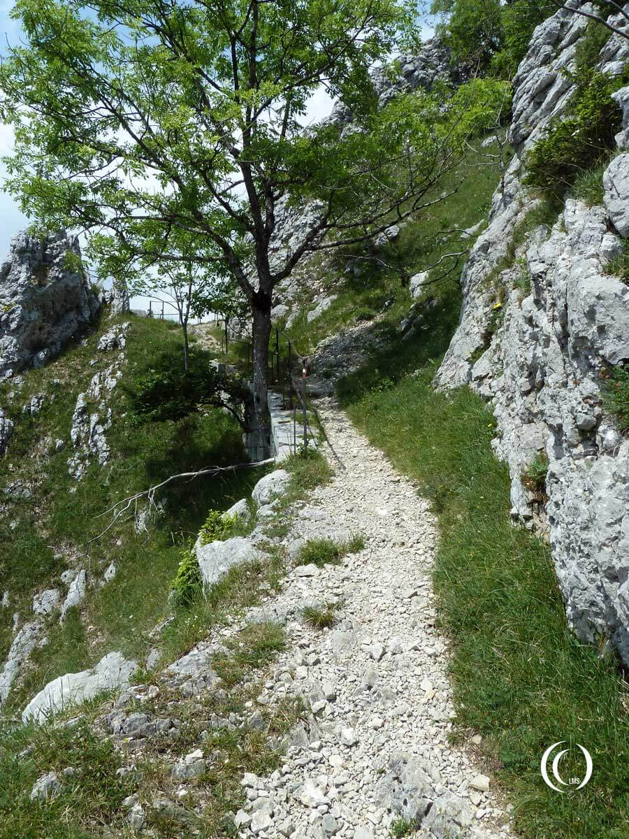 Walking trail up to Fort Mahler
