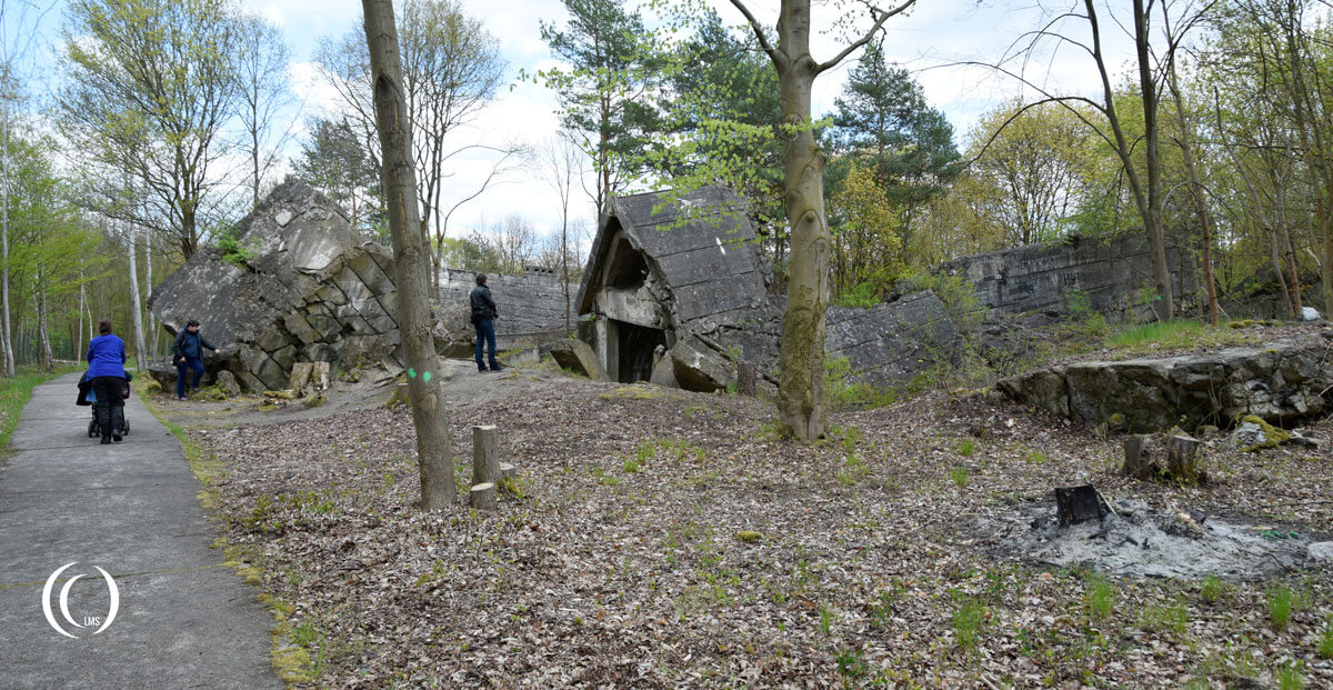 View of the bunkers scattered over the forest floor at Wunsdorf-Zossen Germany