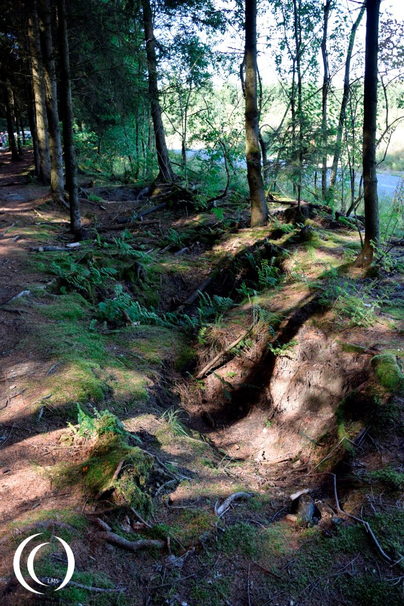 A Foxhole line up of Easy Company in Jack's Forrest - near the road from Foy to Bizory