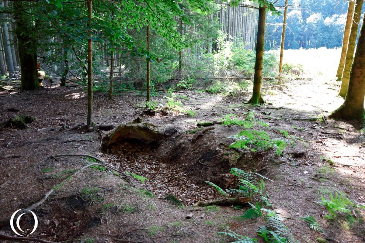 Foxhole of Easy Company in Jack's Forrest - Open Field towards Foy in the back