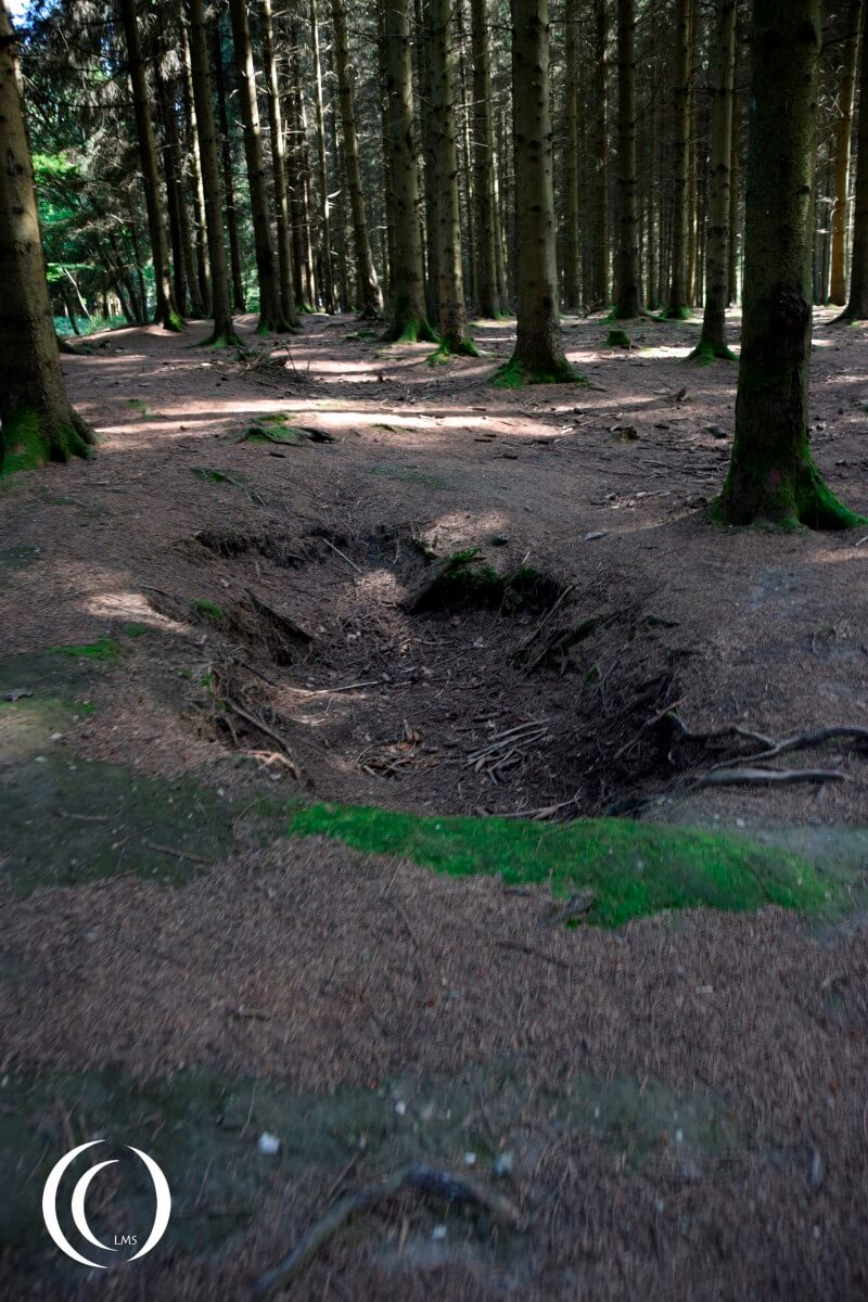Foxhole of Easy Company in Jack's Forrest