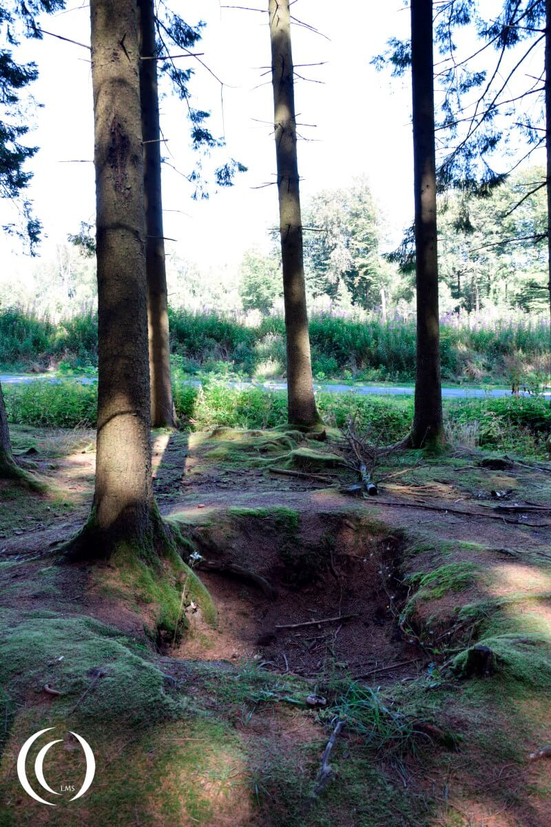 Foxhole of Easy Company in Jack's Forrest - near the road from Foy to Bizory