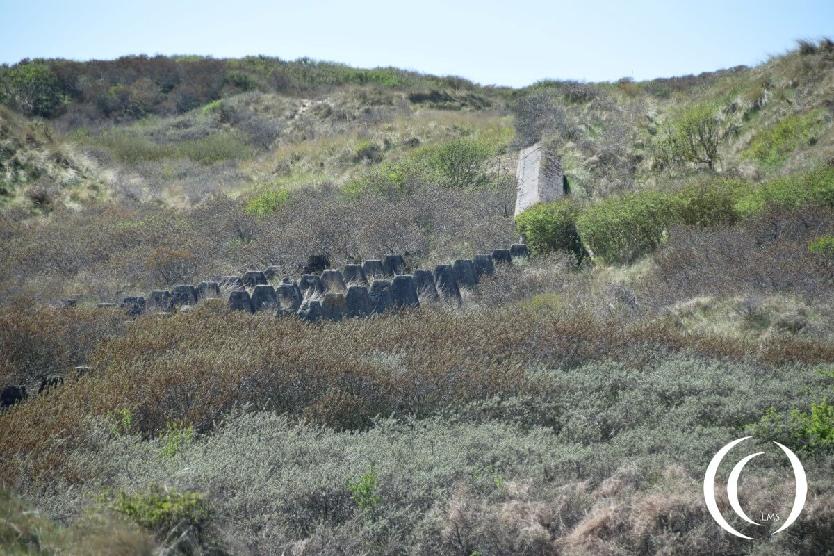 Dragonteeth and Anti Tank Wall - Batterie Olmen